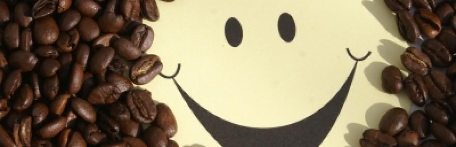 Wenn plötzlich eine Nutte auf der Matte steht…., Homosexualität in der Bibel, Flattr in Bildern – Wie funktionierts?, Leben vor dem Fenster und neues Leben im Haus und Sehenswert: Wizards in Winter – Holdman Christmas.