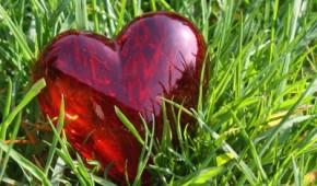 Herz auf der Wiese