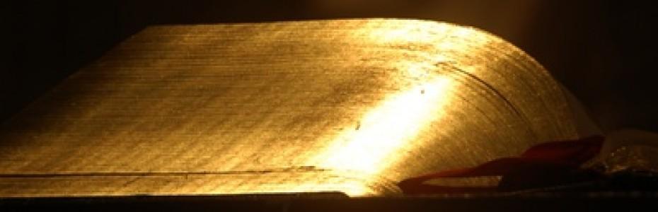 Eine Grundlage der Stillen Zeit ist natürlich das Lesen der Bibel. Das alles in einem Durchzulesen, könnte für den einen oder anderen ziemlich anstrengend sein, deshalb gibt es einige Hilfen, wie man durch die Bibel lesen könnte. ;)