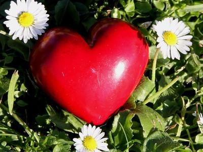 Ein Gastartikel von der Jojo. Sie beschreibt in einem Gedicht was für sie persönlich die Liebe Gottes bedeutet.