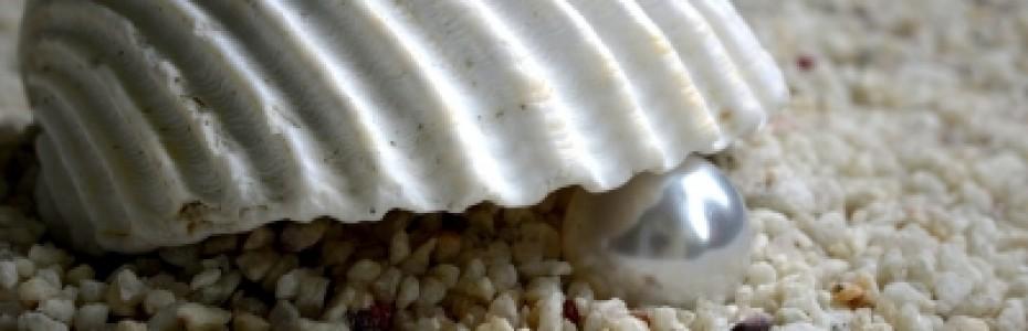 Das Himmelreich ist auch vergleichbar mit einem Perlenhändler, der nach kostbaren Perlen Ausschau hielt. Als er eine Perle von großem Wert entdeckte, verkaufte er alles, was er besaß, und kaufte die Perle! (Matthäus 13, 45-46)