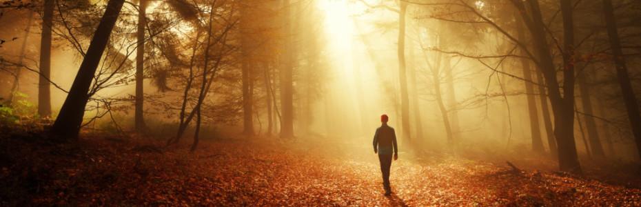 Manchmal fühlen auch wir uns weit weg von Gott oder in Situationen gefangen, die aussichtslos erscheinen. Doch gelegentlich nutzt Gott genau diese Situationen, um uns wieder auf den richtigen Weg zu bringen.