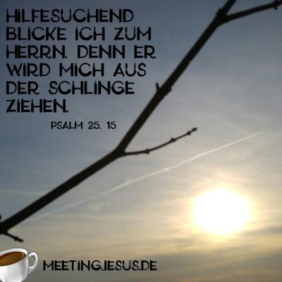 Der Blick zum Himmel - Psalm 25, 15