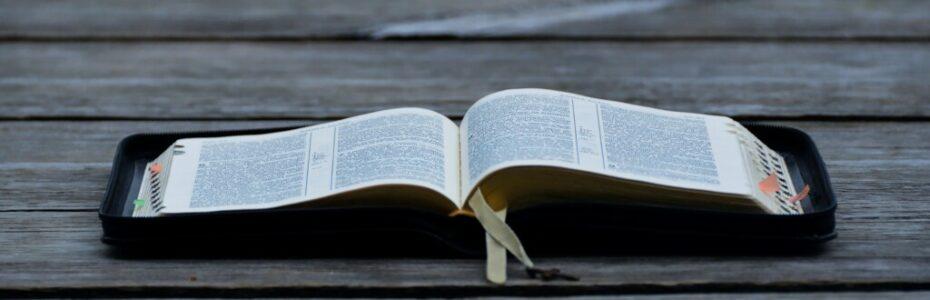 Hast du schon mal erlebt, dass Gott auf deine Bitten anders reagiert hat, als du es dir gewünscht hättest? Oft haben wir die Vorstellung davon, dass wir Gott um etwas Bitten und er es dann bitte jetzt sofort genau so erfüllt, wie wir es gern hätten! Aber Gott hat seinen ganz eigenen Plan mit dir!